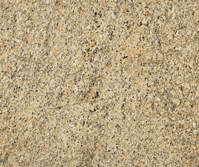 New Venetian Gold Polished-Suede