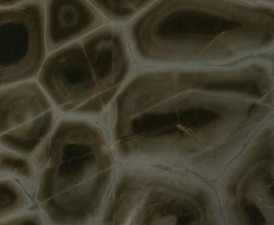 Tortuga (Soft Quartzite)